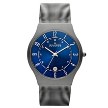 Skagen Men's Grenen Titanium coupon